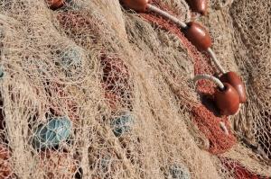 2933fishing_net