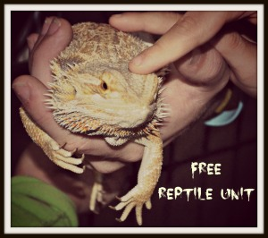 free reptile unit