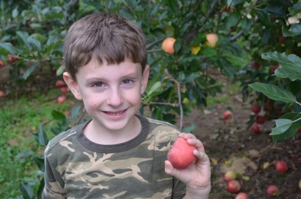 apple13